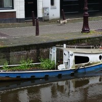 Sunken boat, but with a garden growing in it.