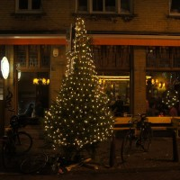 Christmas tree outside a bar/cafe Krom on the corner of the Kerkstraat and Utrechtsestraat with a bike under it.