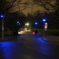 Vondel Park at night. Apparently you can't see your veins in blue light.