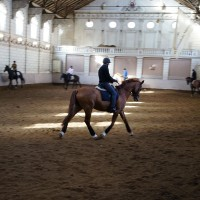 Inside the Amsterdam Manege