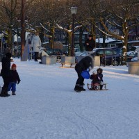 A small hill at Amstelveld park is all these sledding kids need.