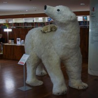 An 8 foot polar bear and cub. This library's kid's section just rocks.